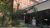24.082017: Am SG gibt's jede Menge Gemüse, Obst, und Kräuter. Damit alles auch wächst, kümmern sich Nadine und Ngoci darum in den Ferien. Die beiden pflegen Beete, die während der Projektwoche von Schülerinnen und Schülern angelegt wurden (mit Frau Ariman und Frau Mielenz).