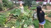 24.08.2017: Nadine und Ngoci pflegen den Schulgarten